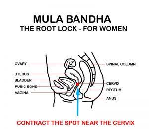mula bhanda for women