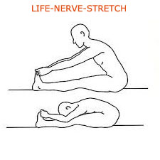 life-nerve-stretch